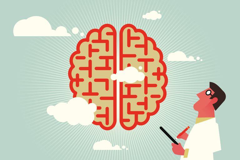 Vector illustration of psychologist examining brain