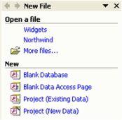 Access Database Menu