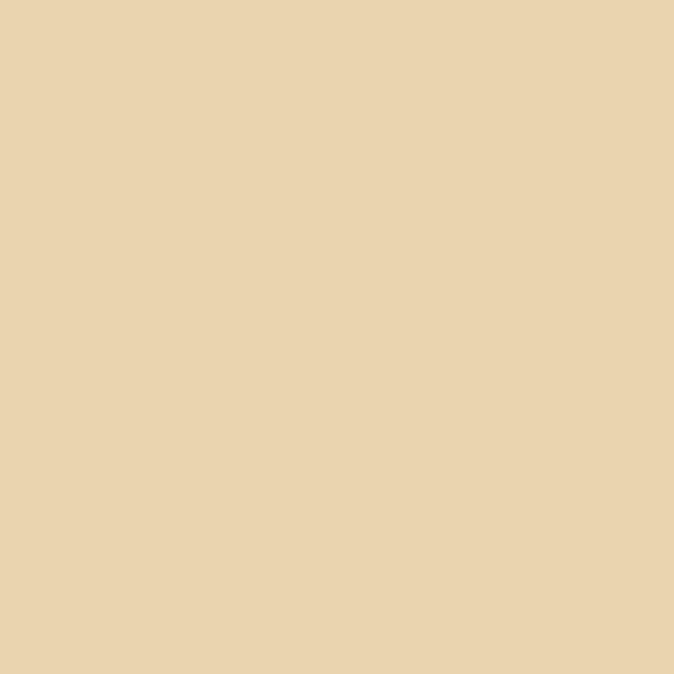 Top 10 yellow paint color ideas for Best cream paint color