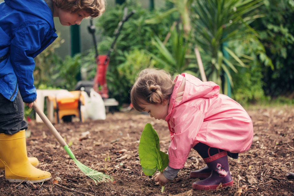 Kids gardening - service