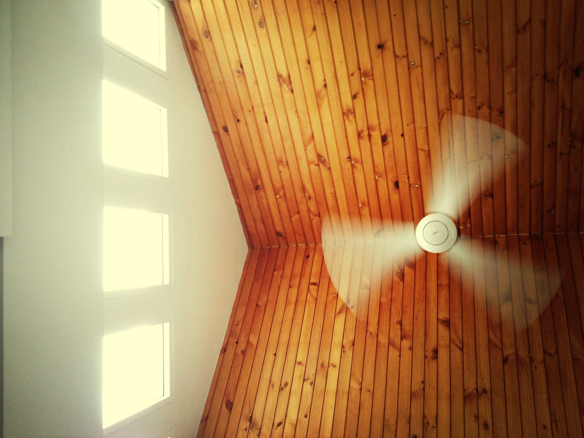 Tips For Eliminating Ceiling Fan Noise