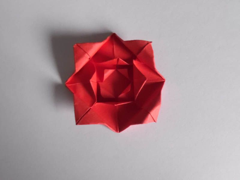 Instructions for an easy origami rose make the petals mightylinksfo Gallery