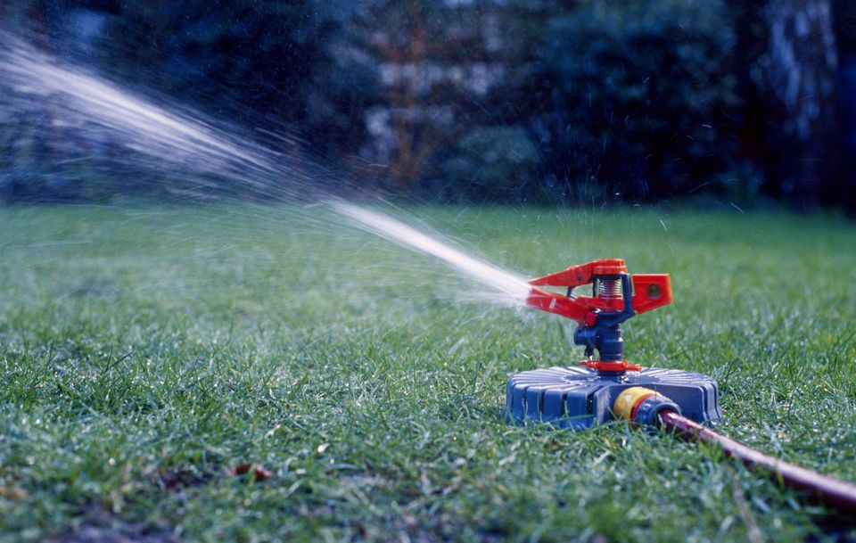 A single rotating pulse jet sprinkler watering lawn area