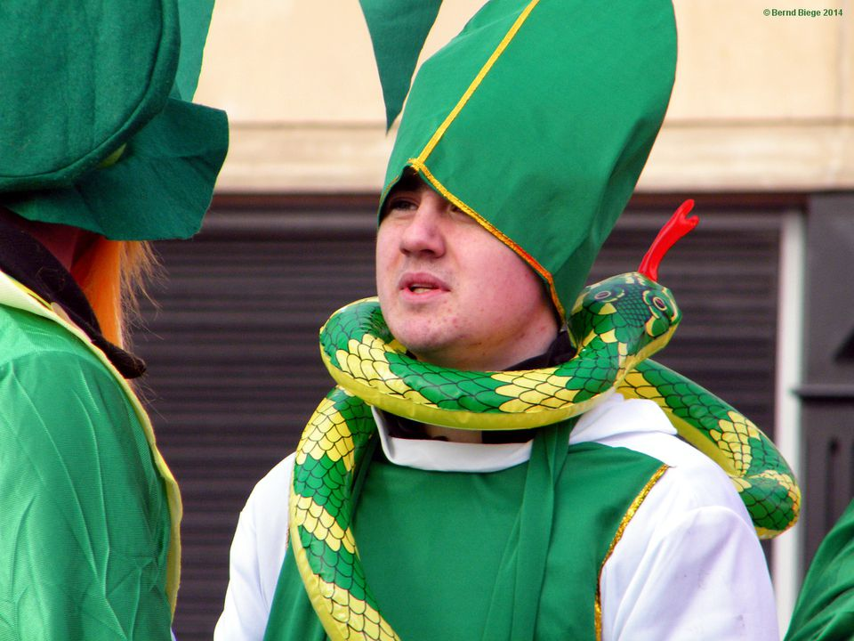 Saint Patrick's Day, Ireland's Best-Known Festival - Always Good for a Holiday and a Hooley