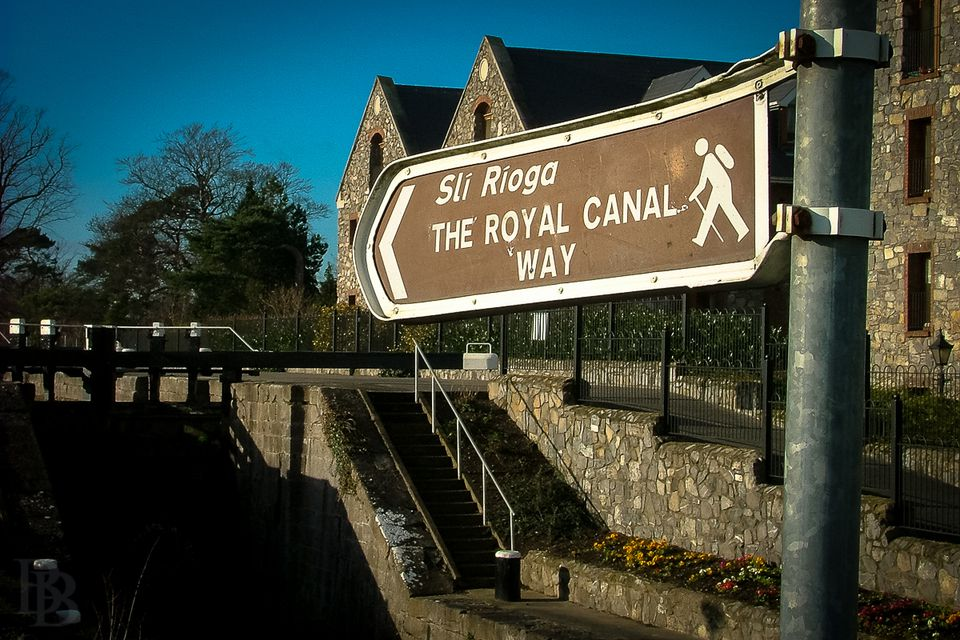 On the Royal Canal Way, between the M50 and Blanchardstown