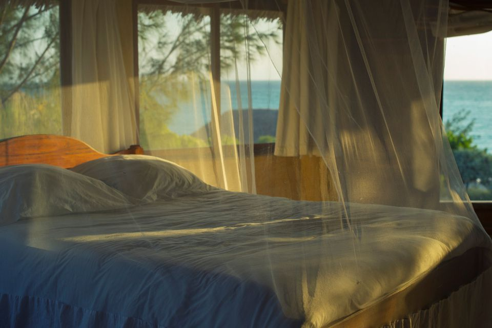 mosquito net bed
