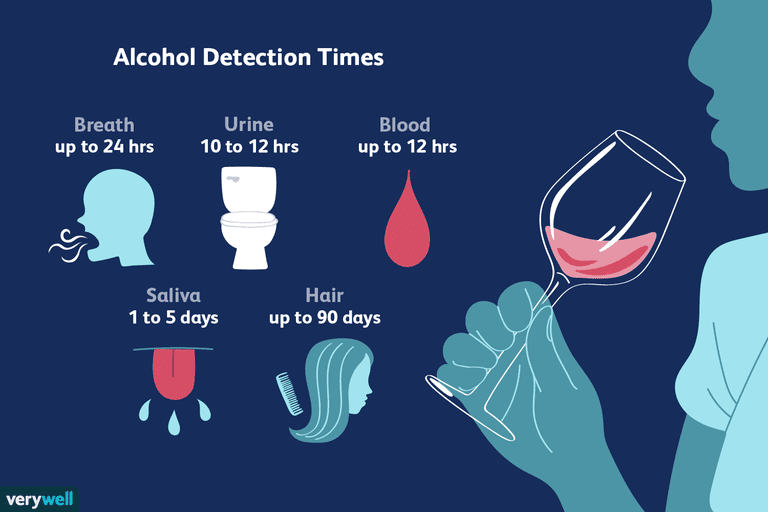 alcohol detection times