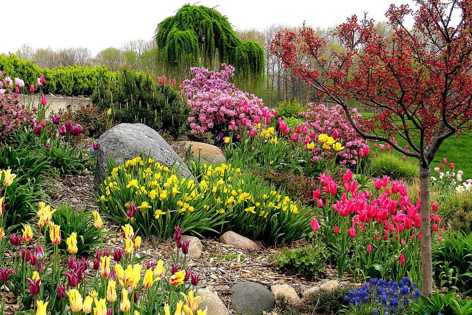 Colorful Yard
