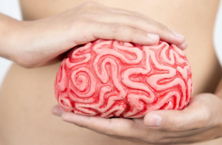 link between brain and gut