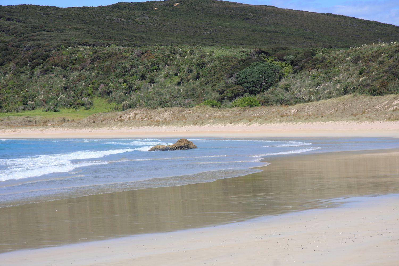 New zealand nude beach