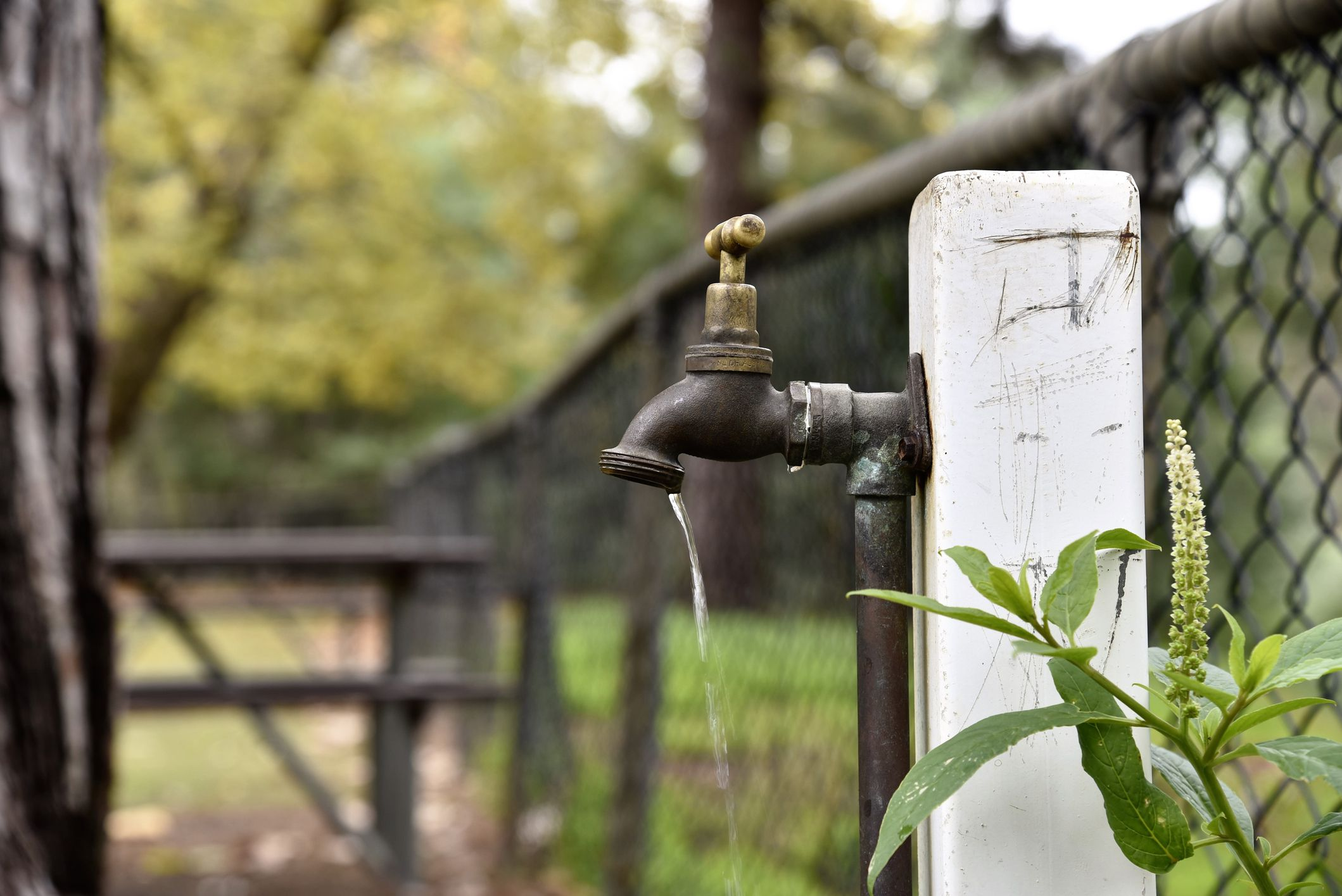 how to change water spigot outside