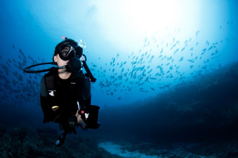 Female Diver Surrounded by Small Fish