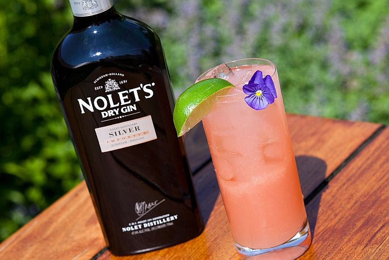 Nolet's Silver Dry Gin Rhubarb Collins Cocktail
