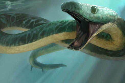 prehistoric snakes