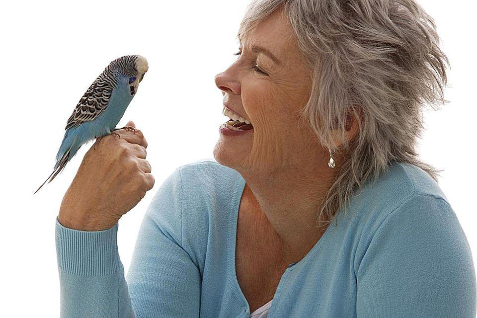 Older woman holding blue bird.