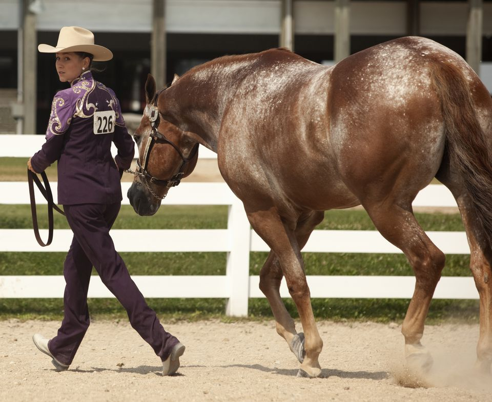Young woman competes at horse show.
