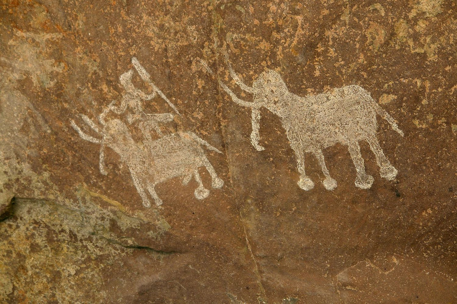 innovations of the upper paleolithic As you should know from your readings, the upper paleolithic was a period of incredible diversity and technological innovation lithic technology also underwent an important change during this time.