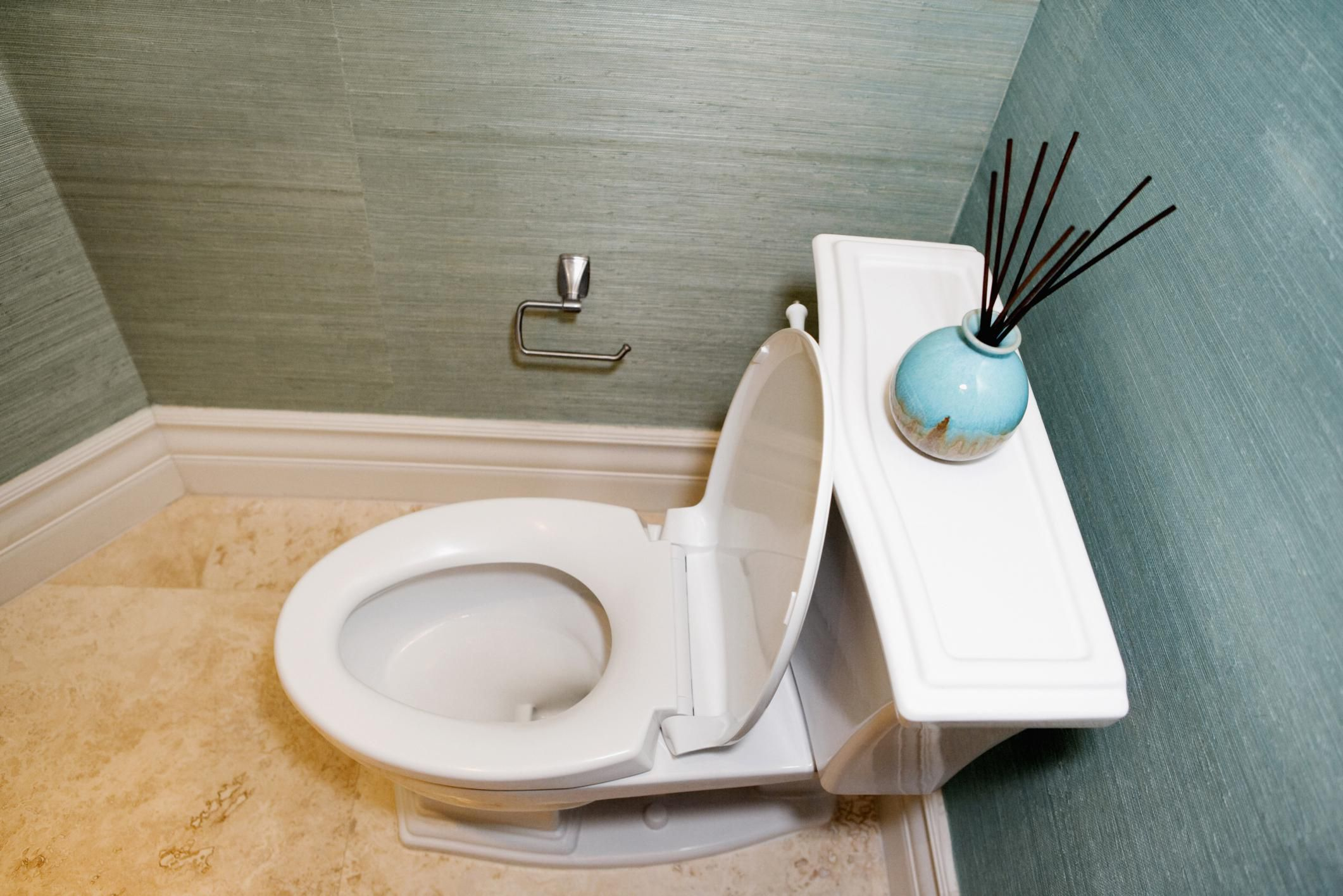 Options To Consider When Buying A New Toilet