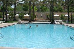 Portofino Bay Hotel pool picture