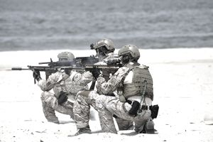 Navy SEALs participate in a capabilities exercise.