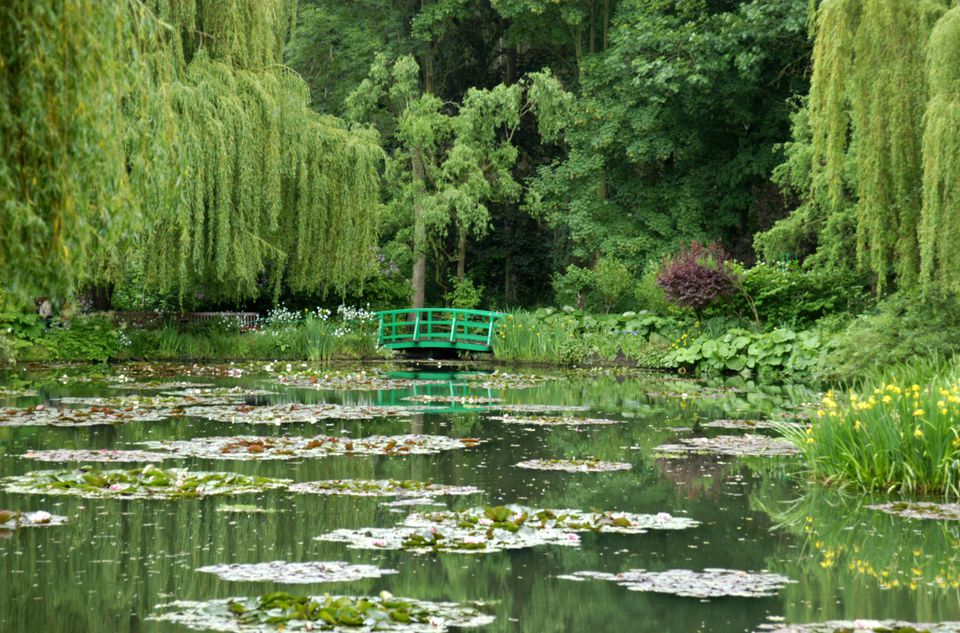 Money's famous waterlilies in Giverny, Normandy