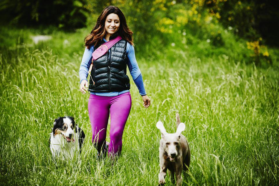 Female dog walker walking dogs at dog park