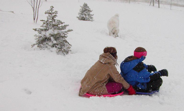 Winter-photo.jpg