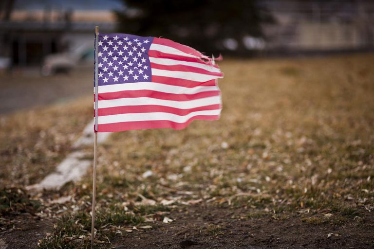 Small american flag in suburban garden
