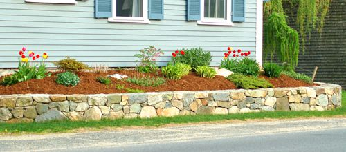 Photo of foundation planting bed with spring plants.