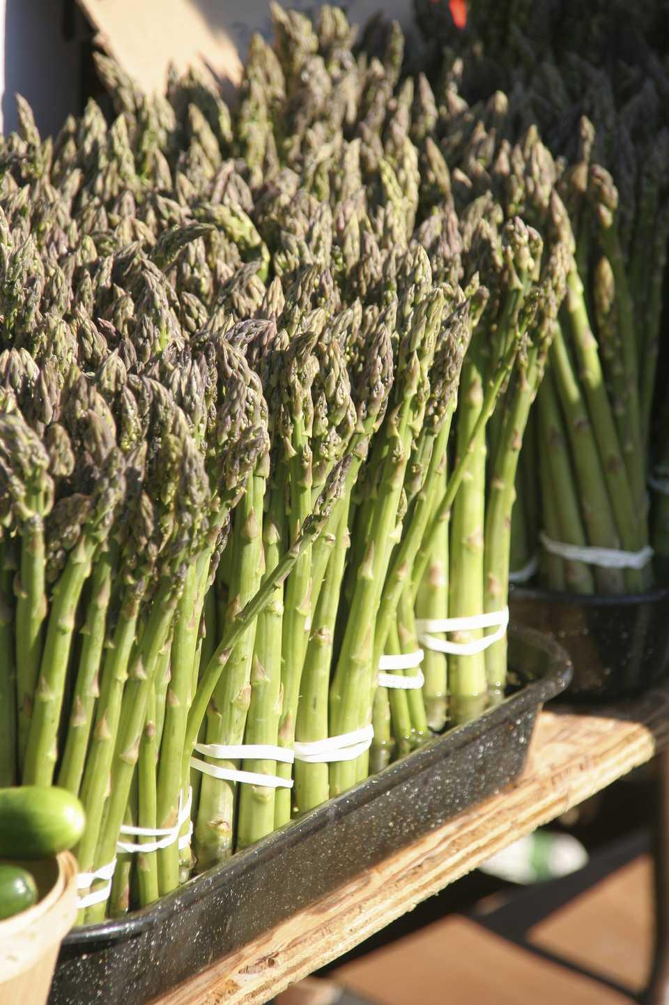 Asparagus at a farmers market, Kitchener, Ontario