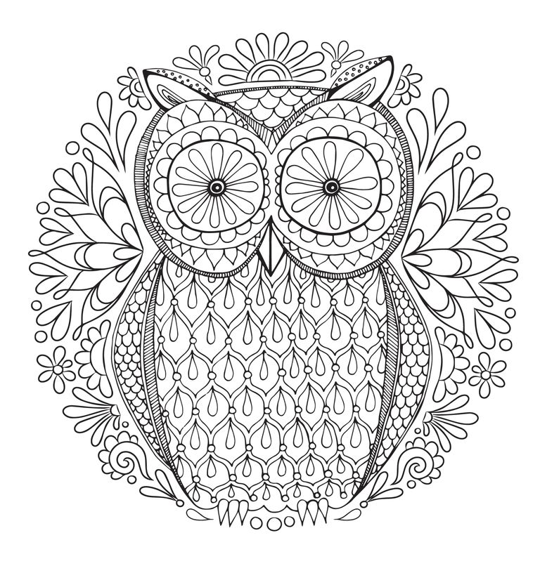 An Owl Adult Coloring Page