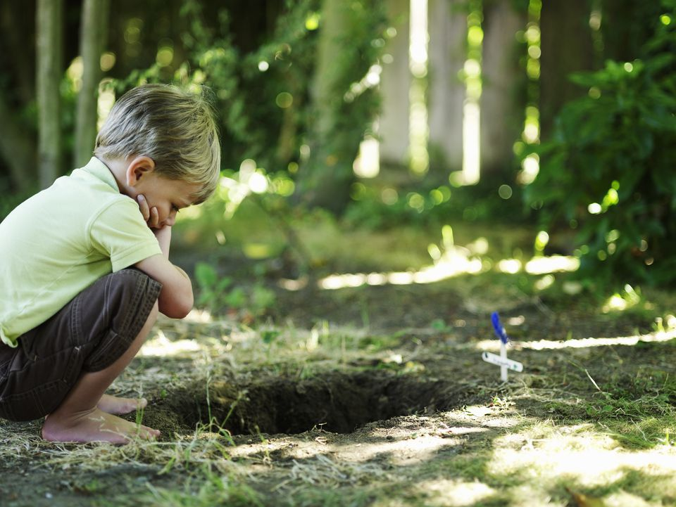 Boy looking into grave of pet.