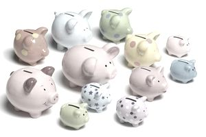 Alternatives to Money Market Mutual Funds