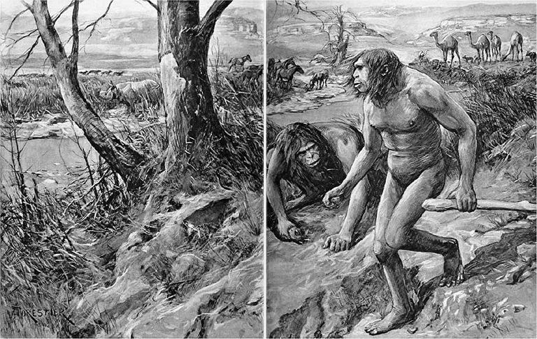 Nebraska Man turned out to be an evolution hoax