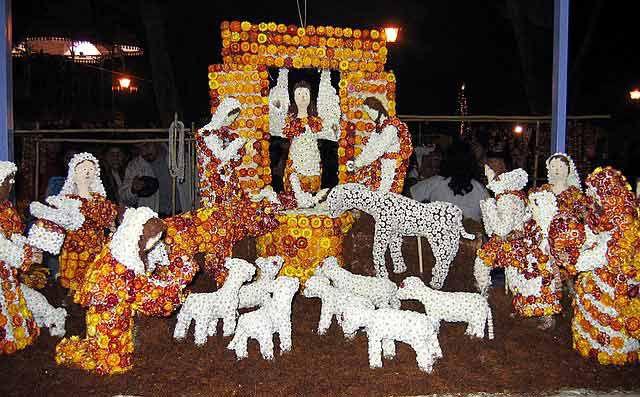dried flower nativity scene