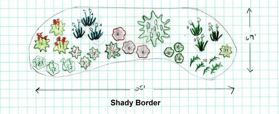 Free Garden Design - Shady Border