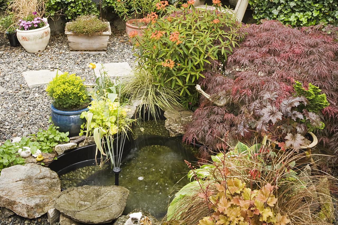 How to build small water features for Garden pond water features