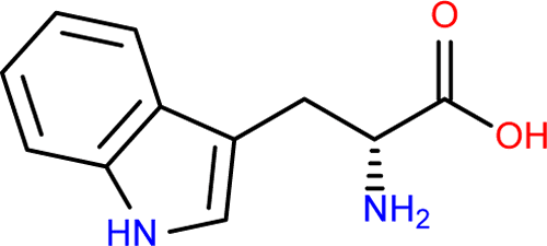 This is the skeletal structure of D-tryptophan.