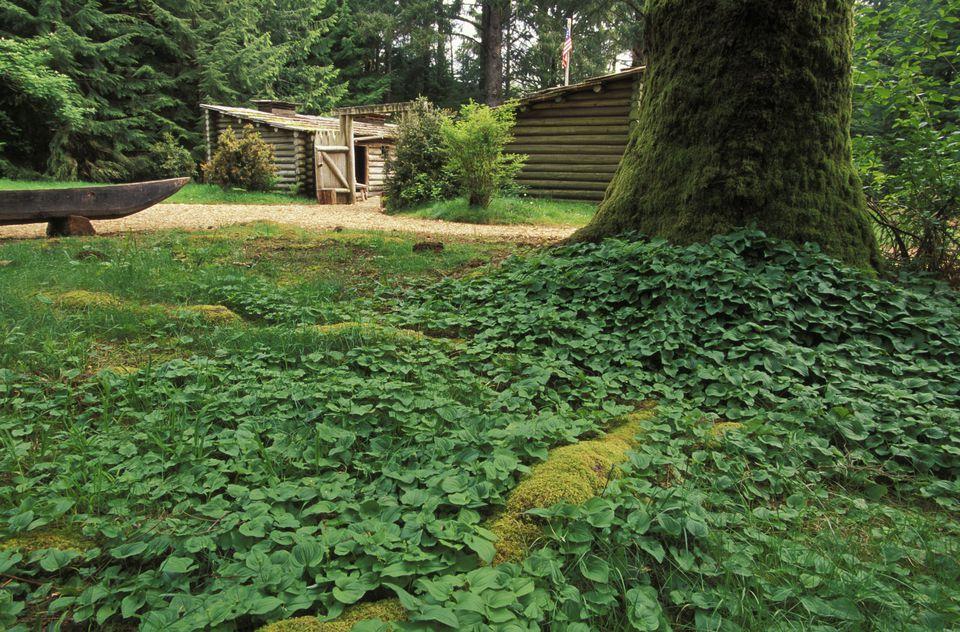 USA, Oregon, Fort Clatsop, Lewis and Clark rebuilt encampment