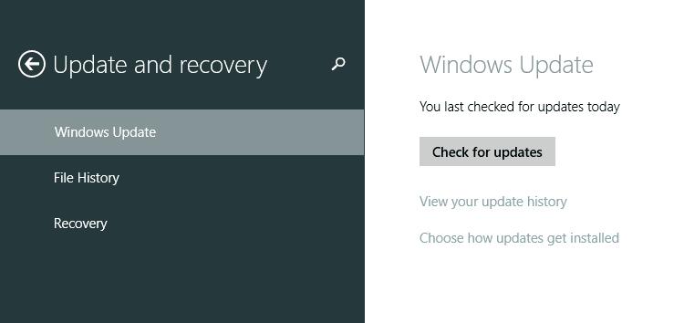 Windows 8.1 Updates
