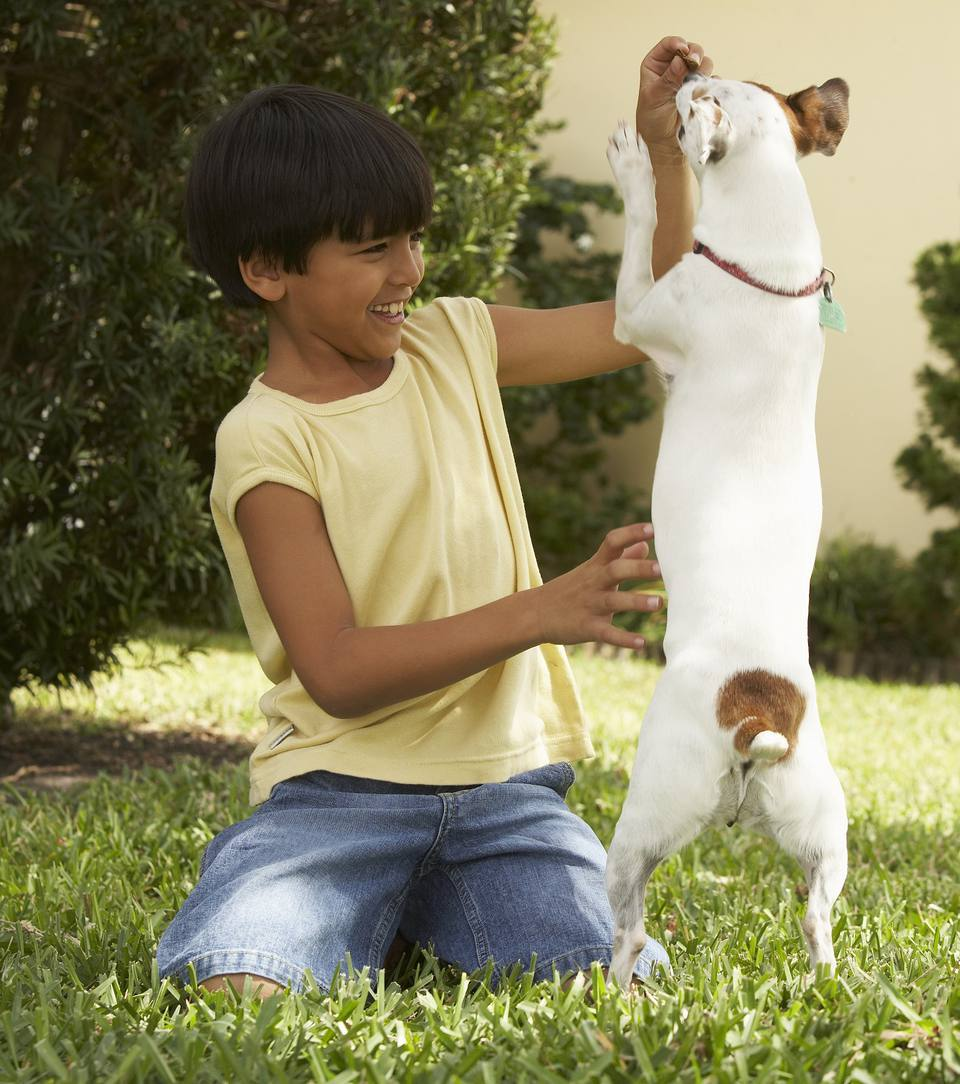 Boy Training Pup