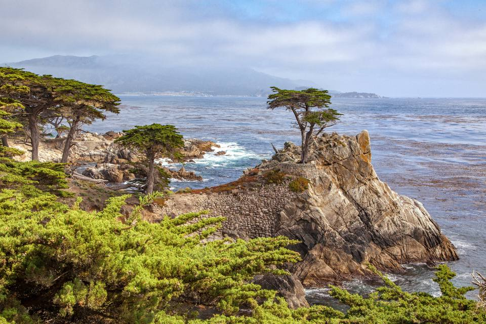 The Lone Cypress on 17-Mile Drive
