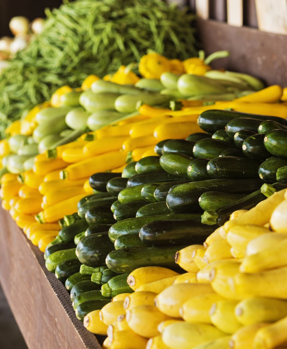 zucchini and yellow summer squash