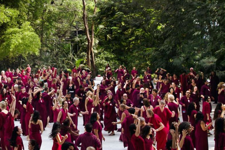 Buddha Grove