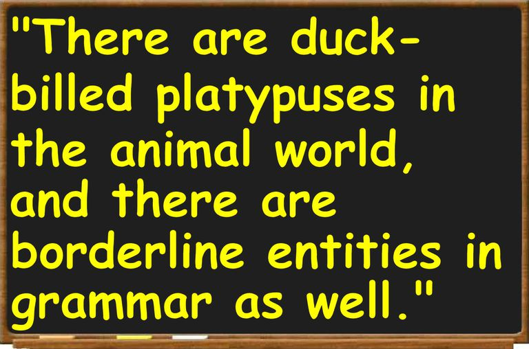 There are duck billed platypuses in the animal world, and there are borderline entities in grammar as well