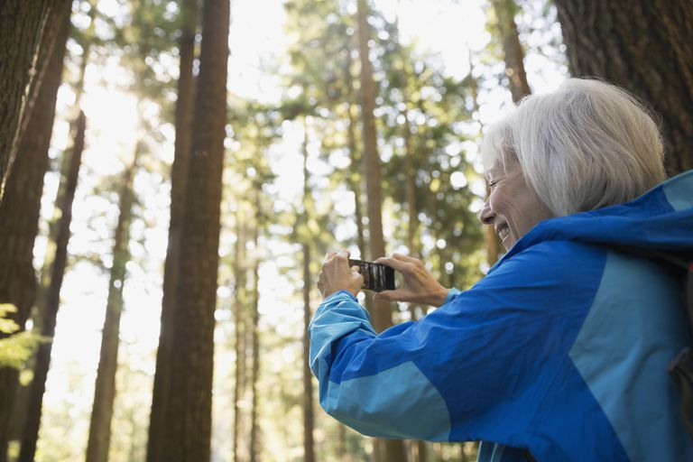 Senior woman photographing trees in woods