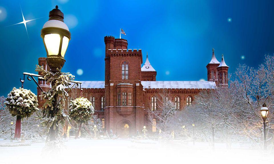 Smithsonian-Holiday-Festival.jpg