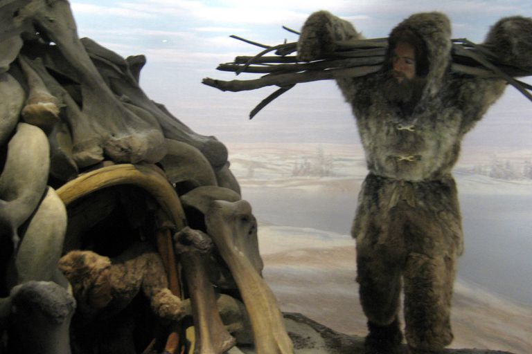 Diorama display at the American Museum of Natural History, based on Mezhirich