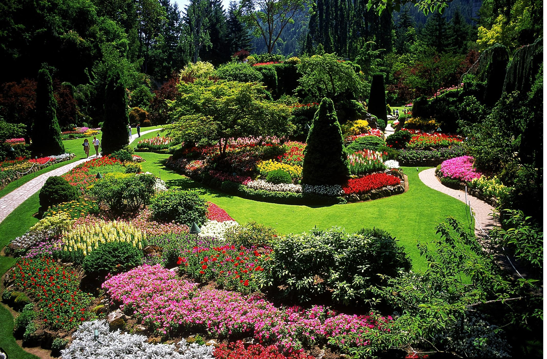 Designing a garden with landscape design principles - Critical elements for a backyard landscaping ...