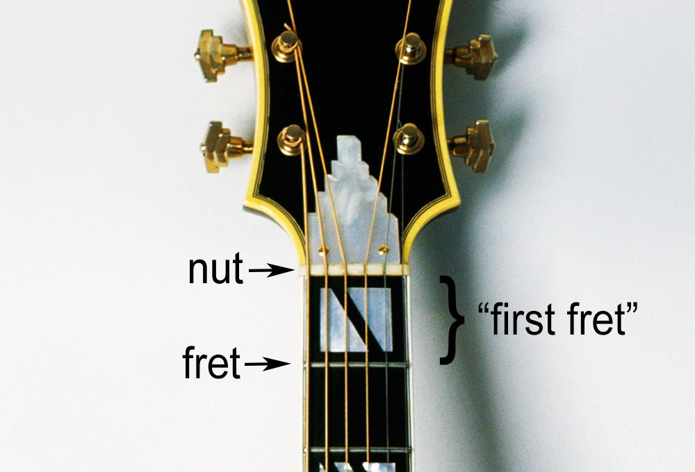 Everything You Need To Know About Frets On The Guitar